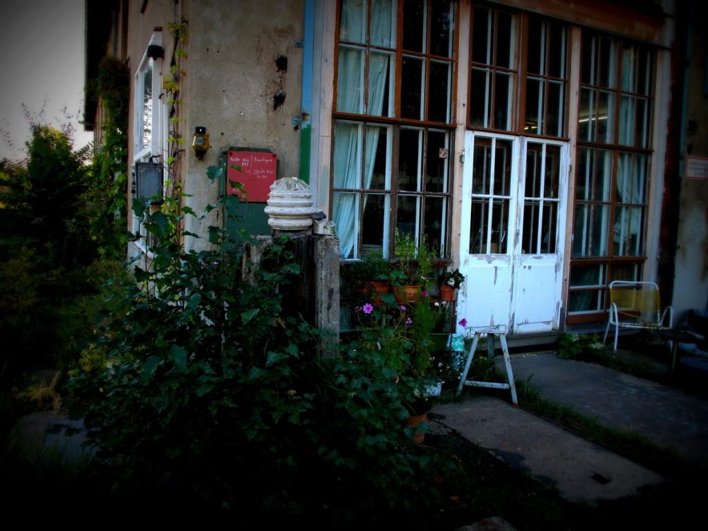Cosmea, Stuck und Sprossenfenster: Atelier im geh8.