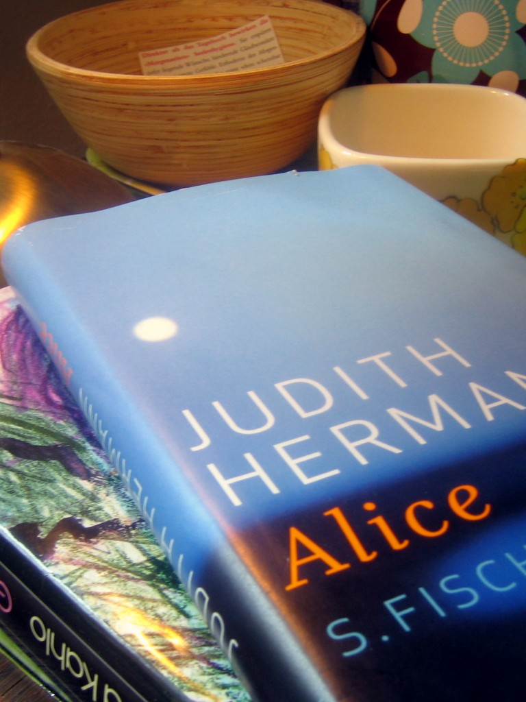 Judith Hermann, Alice (2009)