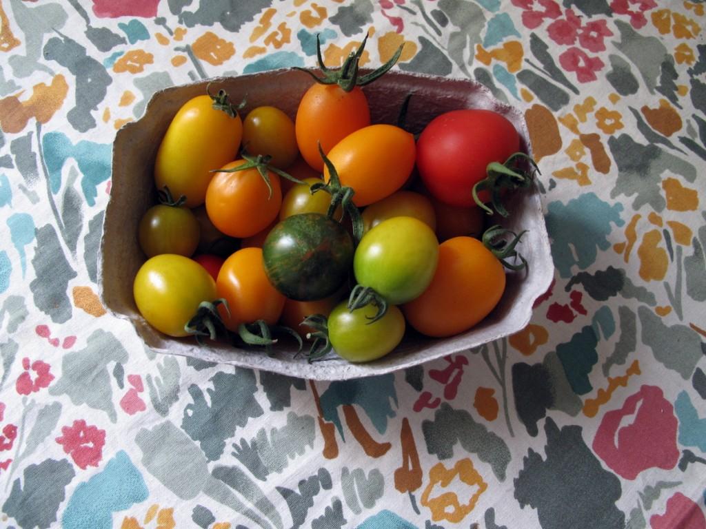 Tomaten-Trip.